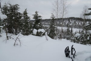 Uitzicht Lapland winter