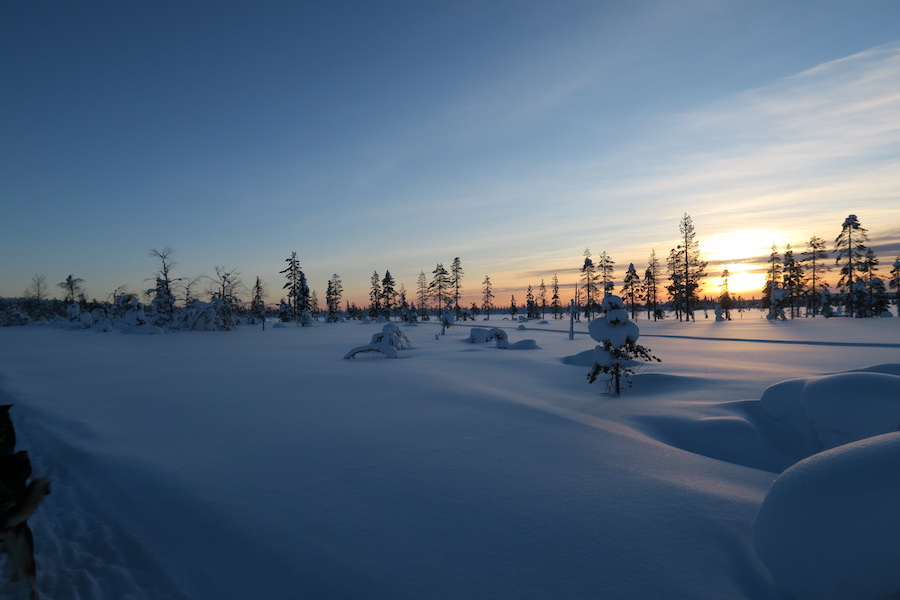 In de winter naar Lapland