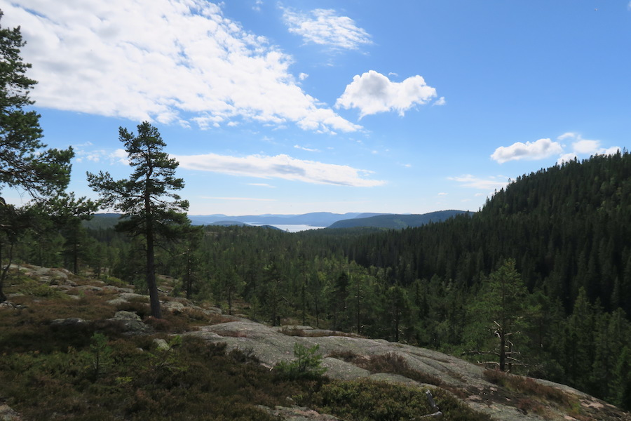 Hoge Kusten Zweden uitzicht Skuleskogen National Park