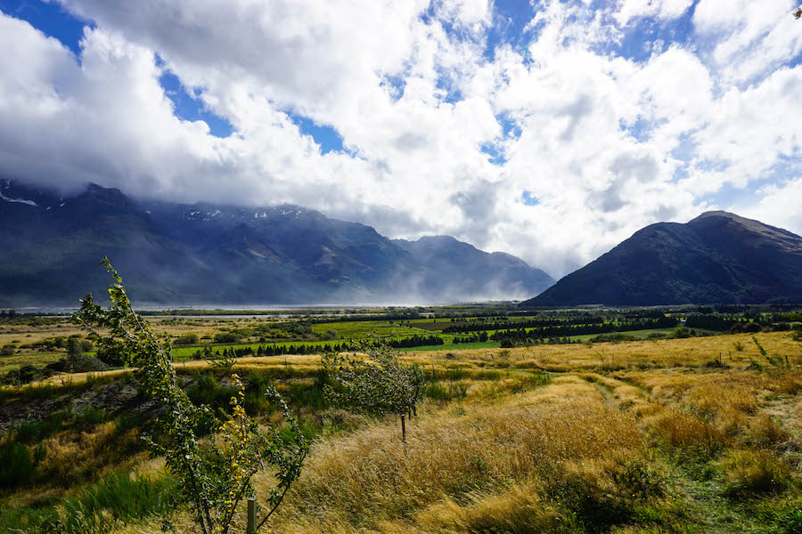 Paradise Nieuw-Zeeland