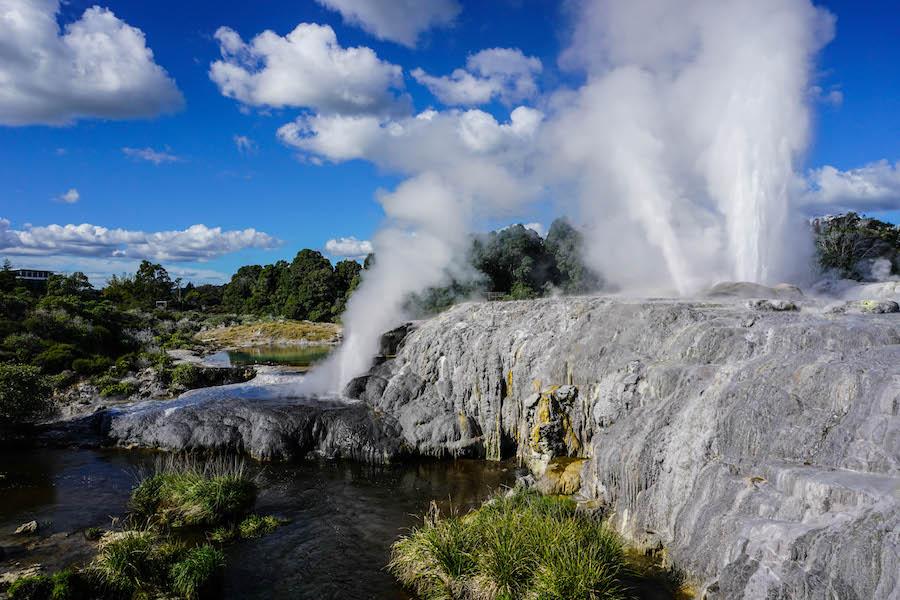 Geyser Te Puia Rotorua