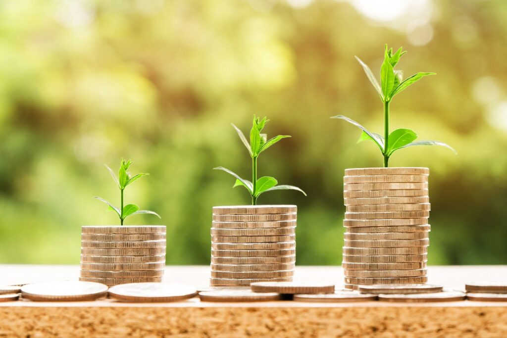Duurzaam beleggen, hoe doe je dat?